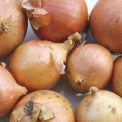 'Onion skins thick and tough, coming winter cold and rough'