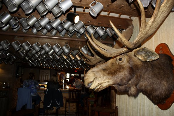 <strong>Wolfe's Tavern</strong></p><p>Finish the day up at Wolfe's Tavern, and you might just become part of the decor! Hearty folk who can handle their drafts can get a personalized mug up in the rafters. All you have to do is drink 100 beers! No, not at once, you actually have to drink one of each of the tavern's 100 beer selections (the catch is you can only drink two per visit). Upon completing the 100th beer, hop up and give Maurice the Moose a smooch and the mug is yours! We didn't quite make it to 100 in our one-day visit to Wolfeboro.</p><p>Of course, we couldn't visit every single place Wolfeboro has to offer, so here's a list of some other fun stuff to do.<br />* Check out the New Hampshire Boat Museum.<br />* Grab a White Mountain-themed candy bar at Winnipesaukee Chocolates<br />* Take a hike on Ellie's Woodland Walk<br />* Take a swim in Lake Wentworth at Albee Beach<br />* Browse for cool music and hot threads at Stay Tuned<br />* Try a tasty breakfast treat at Crepes Ooh La La or the Yum Yum Shop<br />* See what you can do to get involved in your community by taking a course from Global Awareness, Local Action