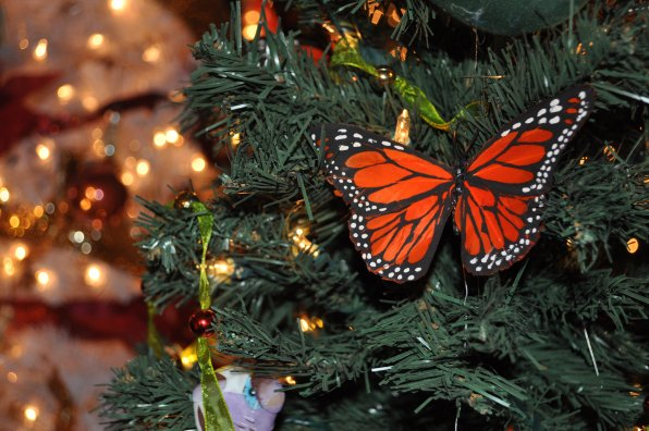 A colorful butterfly from a tree donated by the Ancient York Lodge.