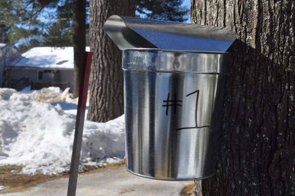 The first official collecting bucket.