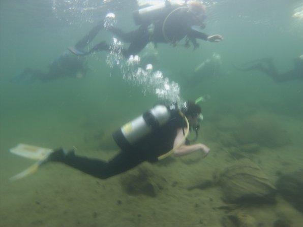 The coalition's own Johane Telgener doing a little scuba diving.