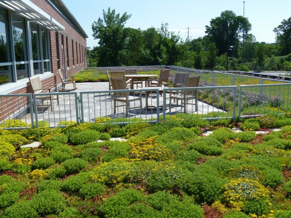 "<strong>Weston Solutions</strong></p><p>There's going green, and there's really going green – as in growing a bunch of green stuff on your roof, like they do over at Weston Solutions on Constitution Avenue. The ""vegetated green roof system"" utilizes recycled plastic and features climate-appropriate plants (our climate: WINTER HELLSCAPE FOREVER). According to the Weston website, the system ""allows a normally impervious roof to absorb rainfall and reduce stormwater discharge. It also lowers the roof top temperature in the summer, reducing cooling costs and extending roof life."" The spot is accessible from the second story of the building (photo at right, courtesy of Weston Solutions). So this place could conceivably hire roof gardeners? What is this, the future?"