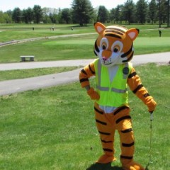 When we heard tiger was on the golf course, we didn't expect Digger