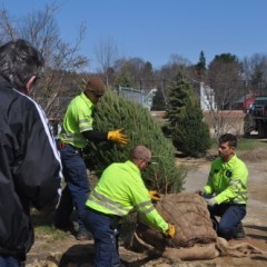 The city planted a tree and little kids played in the dirt for Arbor Day