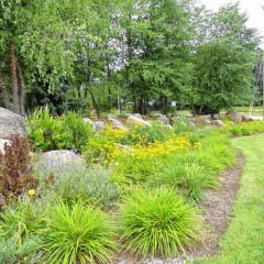 Want to know why Bow is so beautiful? Meet the Bow Garden Club