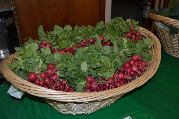 Now that's a lot of radishes.