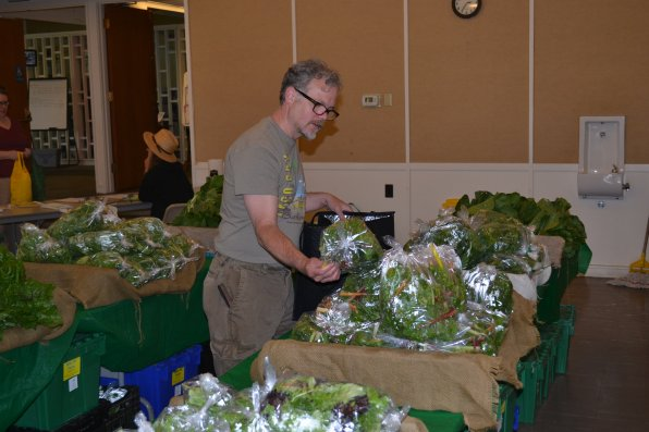 Larry Fernsworth picks out a bag of greens at the Local Harvest CSA last week at the Unitarian Church.