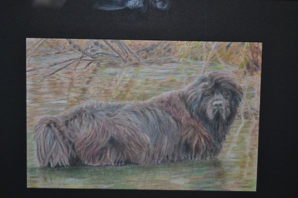 Hamish at the Quarry in Fall, Donna Mercer.