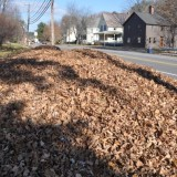 Get your leaves to the curb
