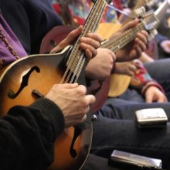 High Strung Strummers to perform at library