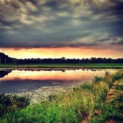 Instagram photo of the week – Tue, 09 Jul 2013