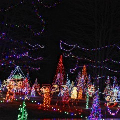 We scoured the streets to find the best light and decoration displays