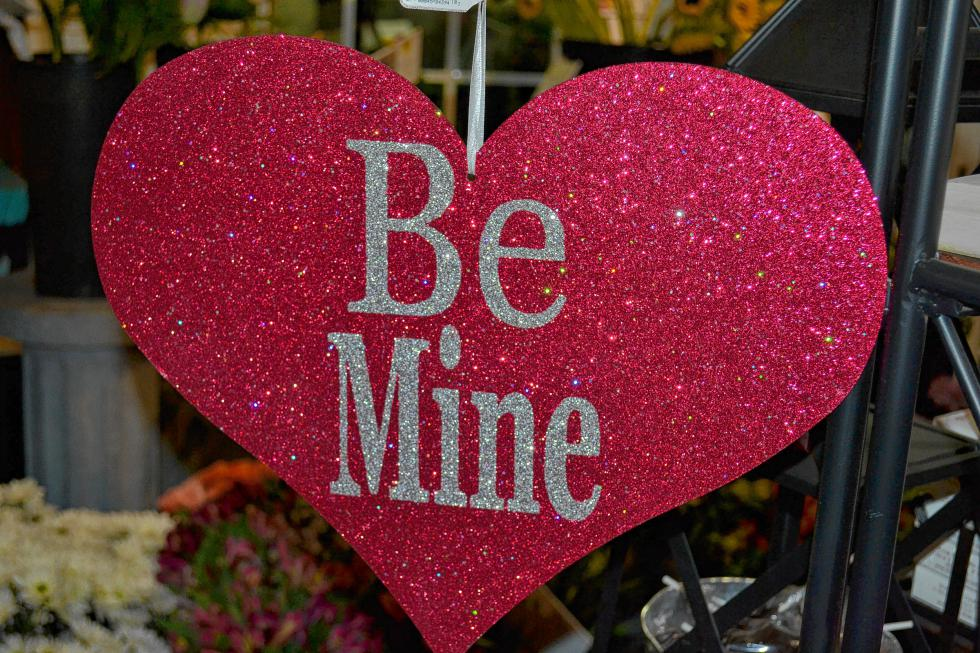 It's an appropriate question for Valentine's Day. (TIM GOODWIN / Insider staff) -