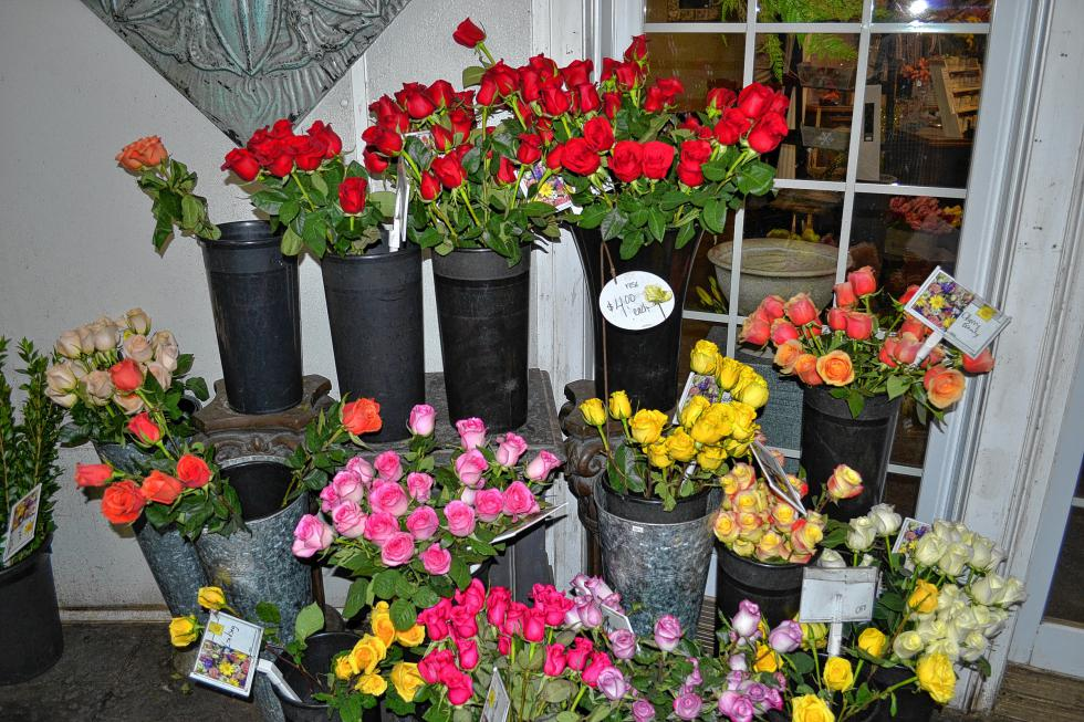 Just look at all those pretty roses at Cobblestone Design Company. (TIM GOODWIN / Insider staff) -
