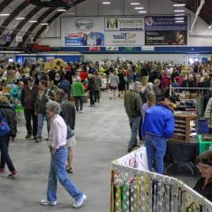 Everett Arena trades ice for thousands of antiques, crafts, shoppers