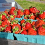 Get your strawberry fix at Bow Mills festival