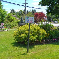 Keep Concord beautiful with adopt-a-spot