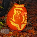 Audubon Enchanted Forest a spooky good time for the family