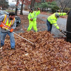 City Manager's Newsletter: Property tax bills, fall leaf collection reminder and more