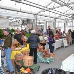 Cole Gardens Winter Market open for season
