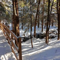 Concord has lots of great spots for winter hiking