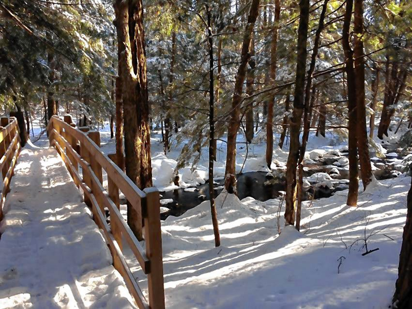 The Concord trails system is a great way to get out and enjoy the winter in New Hampshire. And in case you didn't know, there are a lot of spots to choose from.