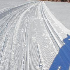 Jon gave cross-country skiing the ol' college try