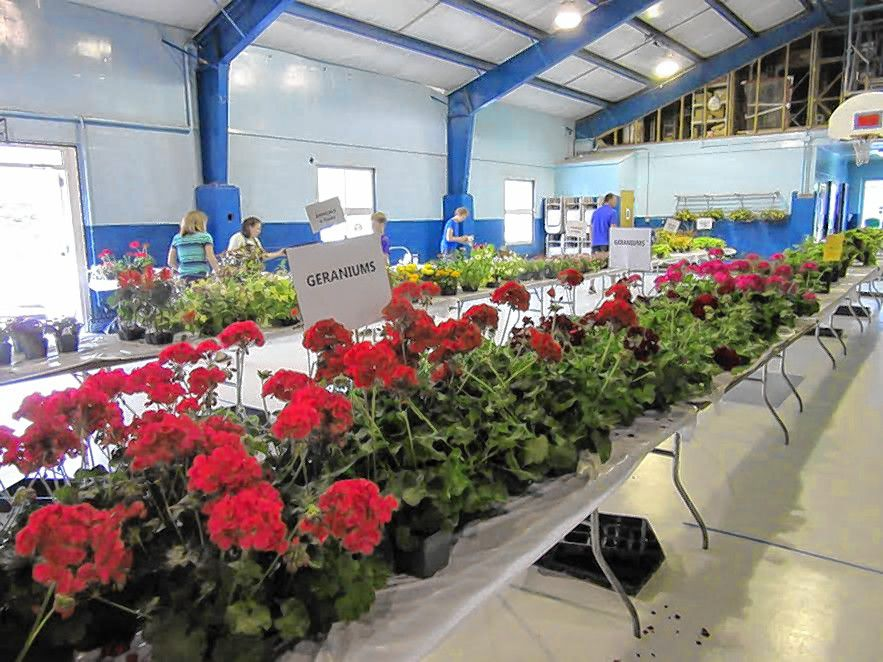 The Bow Garden Club is hosting its annual spring plant sale this Saturday.