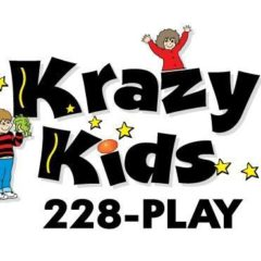 Best Place to Have a Kid's Birthday Party 2019 – Krazy Kids Indoor Play & Party Center