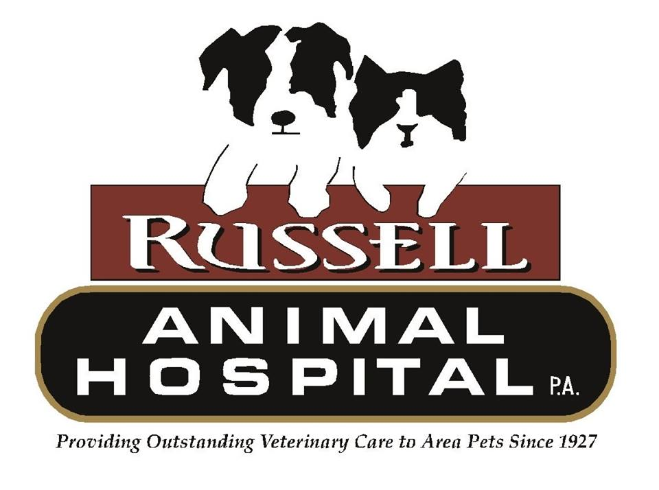 Best Best Veterinarian - Russell Animal Hospital