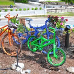 Two new additions to the Big Bicycle Project