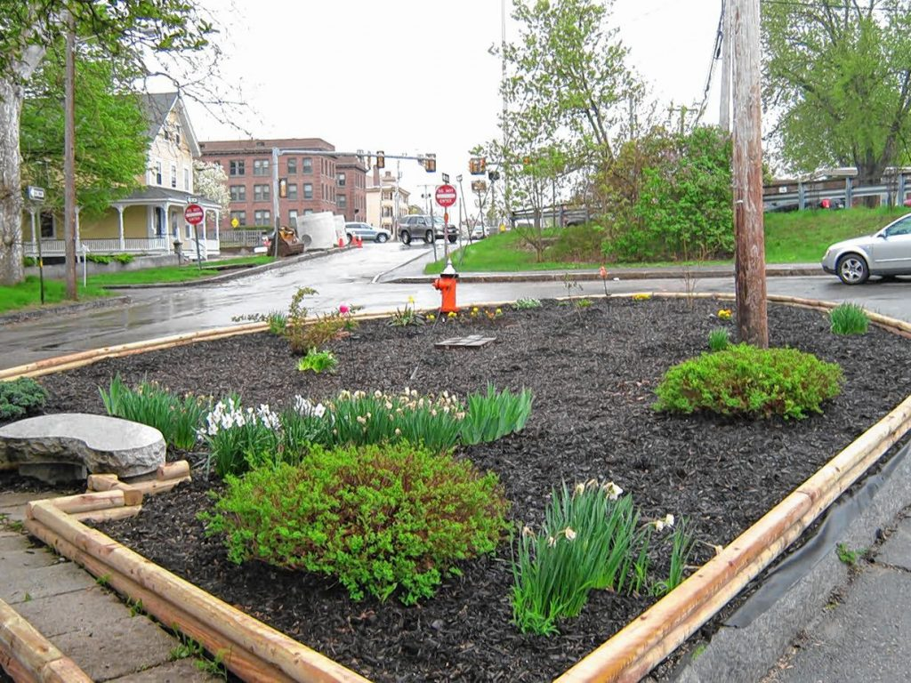 Wayne Wilson is keeping his Adopt A Spot next to Kimball-Jenkins Estate looking mighty nice these days. Courtesy