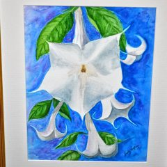 On Display: NHTI is home to the artwork of Judy Palfrey