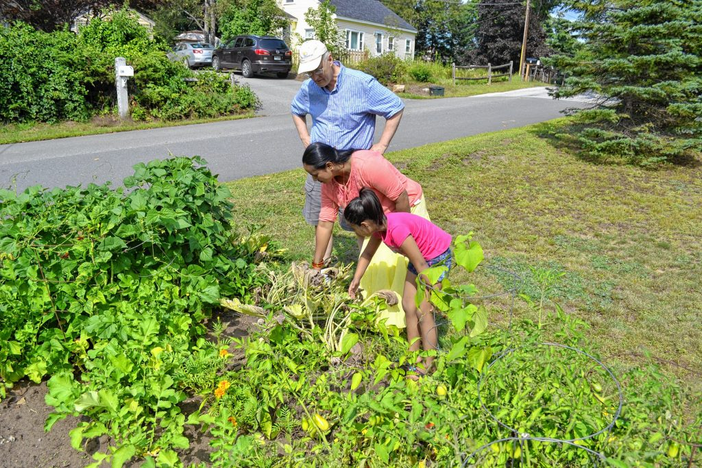 Indra Dangal and her daughter Aayusha talk with Bob Reals in the front yard garden they use at Reals home on A Street. TIM GOODWIN / Insider staff