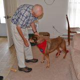 Bill Bushnell is one extraordinary volunteer