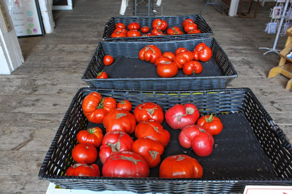 At Dimond Hill Farm, tomatoes are their specialty -- and when you take a look at these bad boys, you can see why. JON BODELL / Insider staff