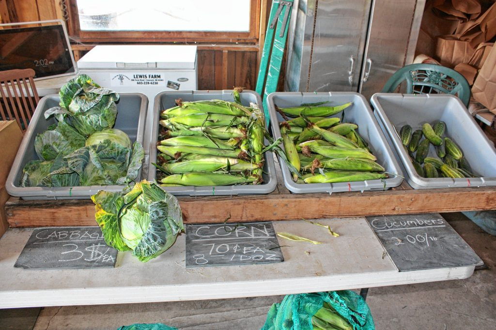 You never know what you might find at Lewis Farm, but when we stopped by last week, we found cabbage, corn, cucumbers, some tiny tomatoes, green and yellow squash, green beans (sold by the handful), kale and Swiss chard. JON BODELL / Insider staff