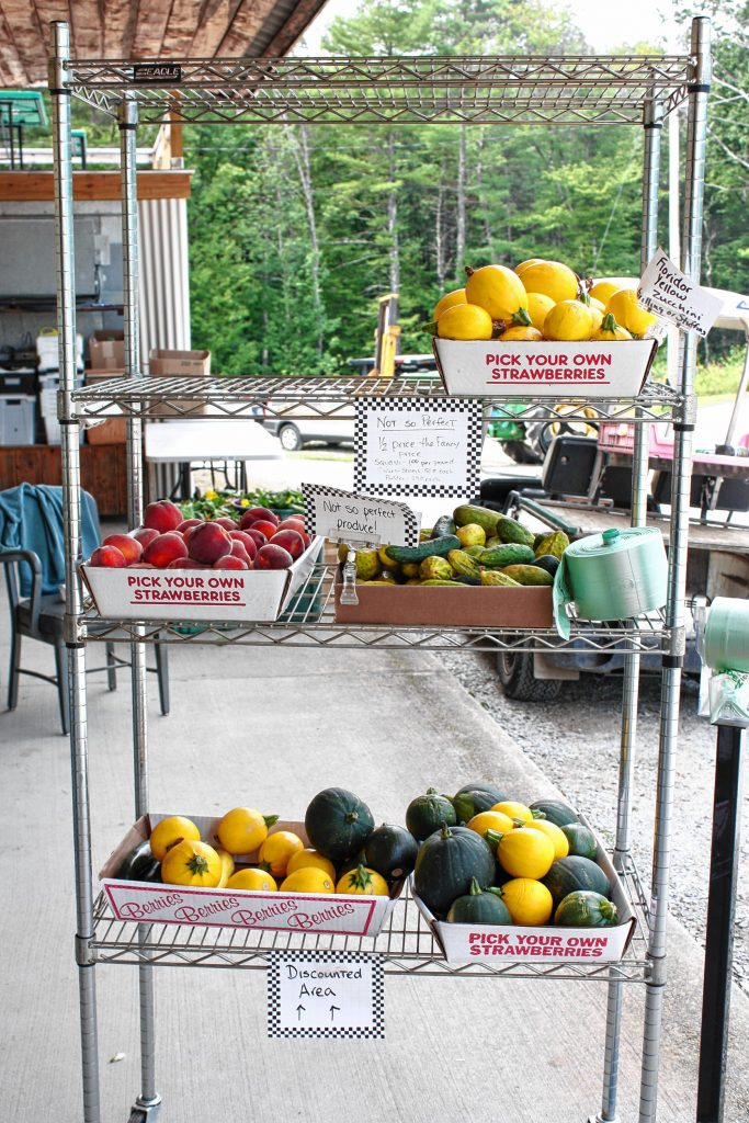 You can get plenty of corn -- and all kinds of other vegetables -- at Apple Hill Farm. JON BODELL / Insider staff
