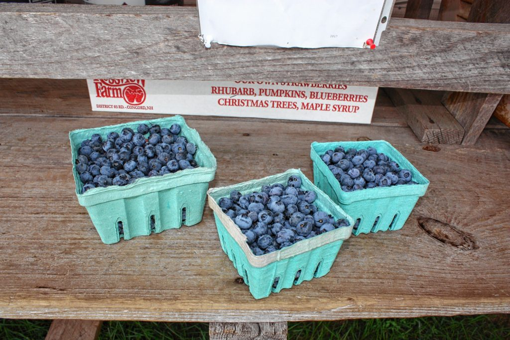 It's blueberry picking season at Rossview Farm, and there are plenty left. If you don't have time to pick your own, you can also buy some from the farmstand that have already been picked for you. JON BODELL / Insider staff