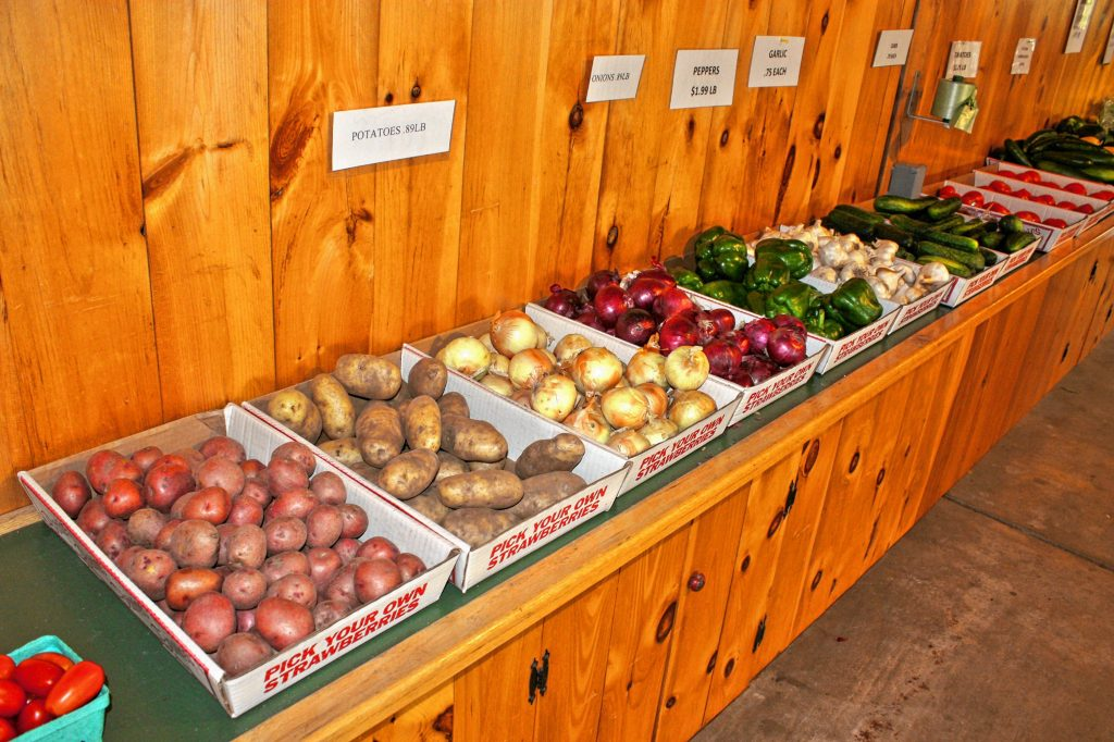 Stock up on fresh veggies -- including potatoes, onions, peppers, garlic, cucumbers, tomatoes and green and yellow squash -- at Carter Hill Orchard. The orchard is also open for pick-your-own blueberries right now. JON BODELL / Insider staff