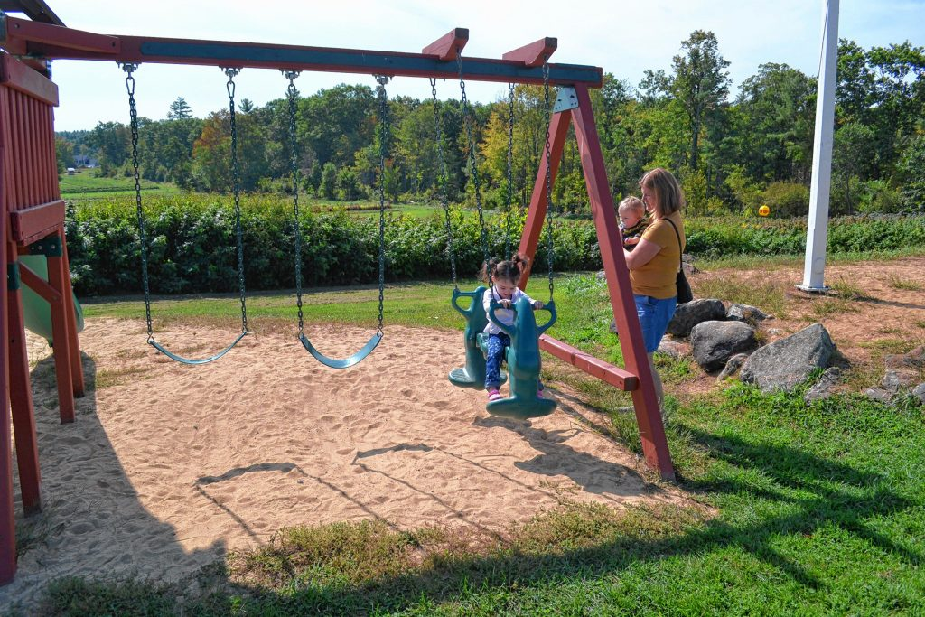 Donna Cuthbert and her grandchildren Callie and Tucker Curtin make good use of the swing set at Apple Hill Farm. TIM GOODWIN / Insider staff