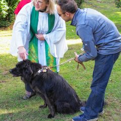 Bring your furry and feathered friends to the State House lawn for Blessing of the Animals