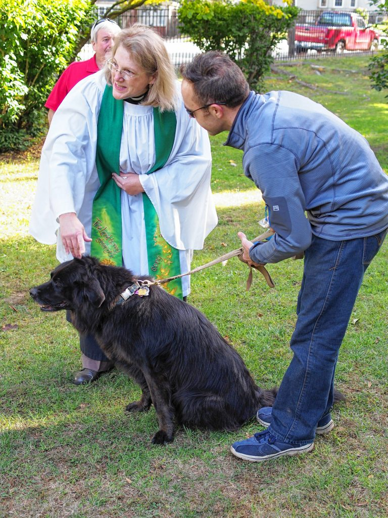 Animals of all types will have the opportunity to receive a blessing from St. Paul's Church on the State House lawn this Saturday. Courtesy of St. Paul's Church