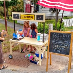 Christa McAuliffe School students raised money for hurricane relief with a lemonade stand