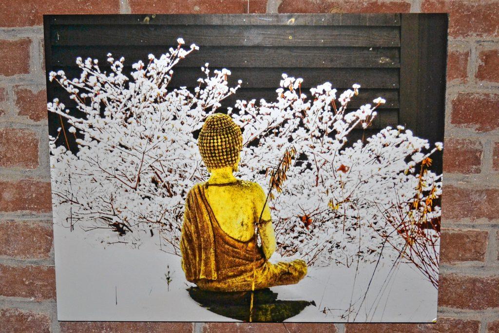 Snow Buddha, Robin White. TIM GOODWIN / Insider staff