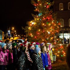 City Manager's Newsletter: Crosswalk repair update, Penacook tree lighting and more