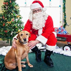 SPCA is holding an open house, wish list drive