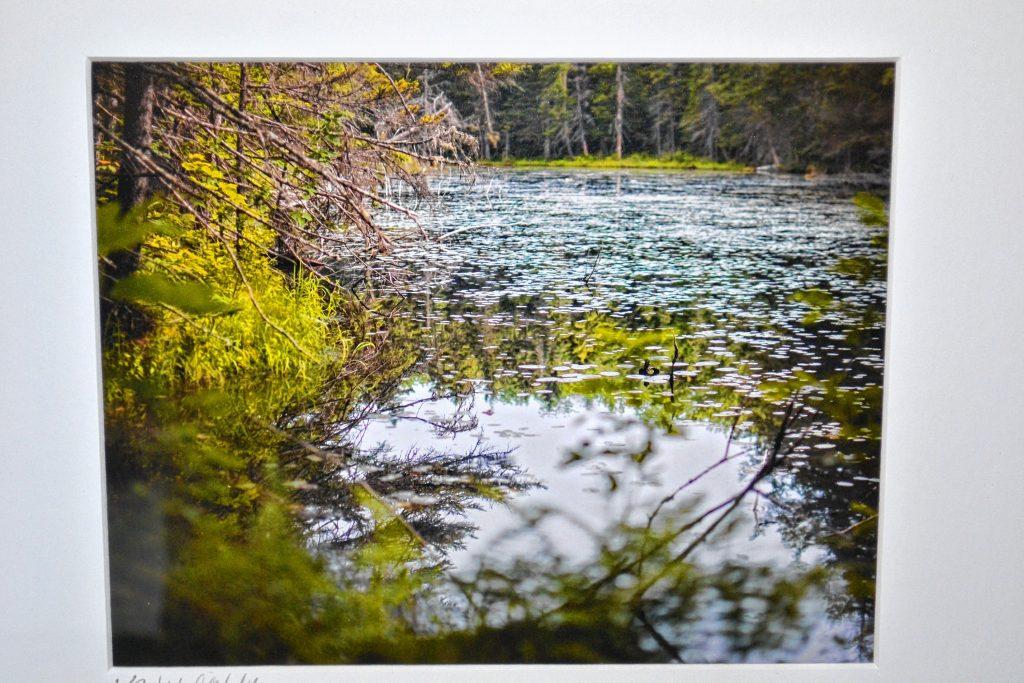 Beaver Pond, Warren, Ken MacGray. TIM GOODWIN / Insider staff