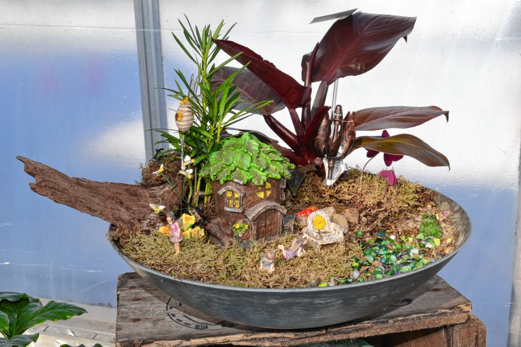 If you want to get your daughter or niece a Valentine, consider a fairy garden from Cole Gardens. TIM GOODWIN / Insider staff