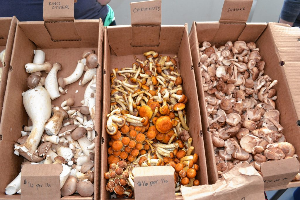 Assorted mushrooms from N.H. Mushroom Company. TIM GOODWIN / Insider staff
